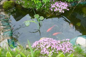 epdm pond liner for decorative pond
